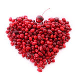Cranberries in heart shape Royalty Free Stock Photos