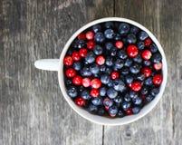 Cranberries i czarne jagody Zdjęcia Stock