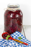 Cranberries i en glass jar Royaltyfria Bilder