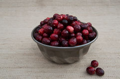Cranberries im Metal Bowl with Beige Background and Loose Berrie Stock Photo