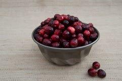 Cranberries im metalu puchar z Beżowym tłem i Luźnym Berrie Obraz Royalty Free