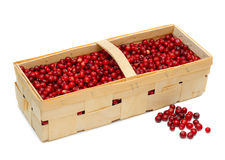 Cranberries In A Basket Royalty Free Stock Image