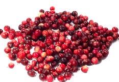 Cranberries, jagody Zdjęcia Stock