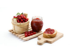 Cranberries Stock Photography
