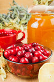 Cranberries, jar with honey, fruit tea cup Royalty Free Stock Images