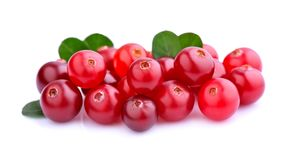 Cranberries with leafs. Royalty Free Stock Images
