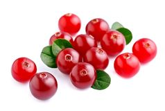 Cranberries with leafs . Stock Images