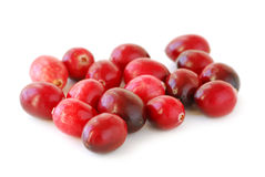 Cranberries macro Royalty Free Stock Photos