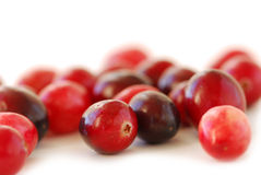 Cranberries macro Royalty Free Stock Photo
