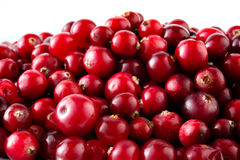 Cranberries macro. Food background Royalty Free Stock Photos