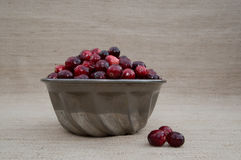 Cranberries in Metal Bowl with Loose Berries at Eye Level Royalty Free Stock Image