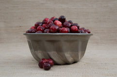 Cranberries in Metal Mold with Loose Berries Royalty Free Stock Images