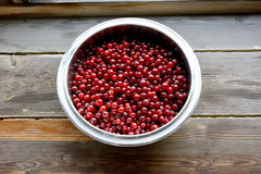 Cranberries. In metallic bowl, on wooden background. Shot made from above Royalty Free Stock Image