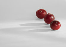 Cranberries na jednorodnym tle Obraz Stock