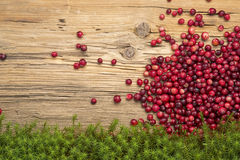 Cranberries on old rustic wooden background. Stock Images