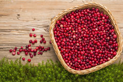 Cranberries on old rustic wooden board. Royalty Free Stock Photography