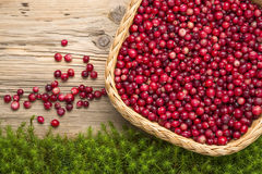 Cranberries on old rustic wooden board. Stock Photography