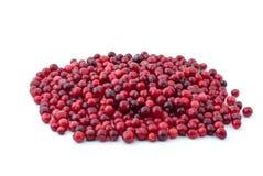 cranberries pile moget Arkivfoto