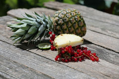 Cranberries and pineapple Royalty Free Stock Photo