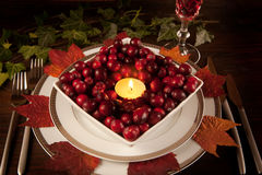 Cranberries on a plate Stock Photos