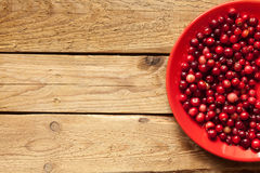 Cranberries on a plate Royalty Free Stock Images