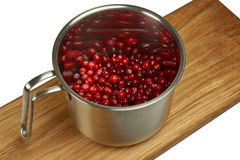 Cranberries in pot on white background stock image