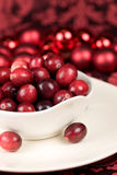 Cranberries on red Royalty Free Stock Image