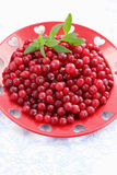Cranberries on red plate Stock Photos