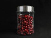 cranberries słój Obraz Royalty Free