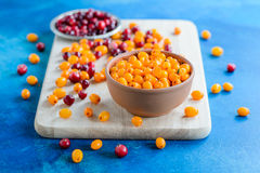 Cranberries and sea buckthorn mix Royalty Free Stock Photography