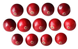 Cranberries Set Stock Photos