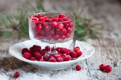 Cranberries and snow on a saucer Stock Photo