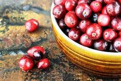 cranberries som tvättas nytt Royaltyfria Bilder