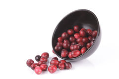 Cranberries spilling out of a Black Bowl Stock Images