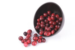 Cranberries spilling out of a Black Bowl Stock Image