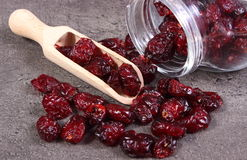 Cranberries spilling out of glass jar on concrete Royalty Free Stock Image