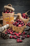 Cranberries still life Stock Photography