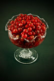 Cranberries and sugar Royalty Free Stock Images