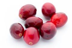 Cranberries top view. Red, ripe cranberries macro view. Stock Image