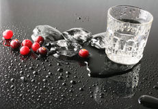 Cranberries and vodka Stock Images