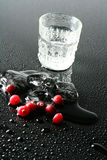 Cranberries and vodka Stock Image