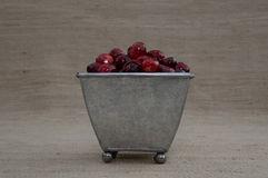 Cranberries w Blaszanym Footed zbiorniku Obrazy Royalty Free