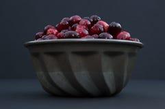 Cranberries w metalu pucharze przy oko poziomem Fotografia Royalty Free