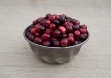 Cranberries w metalu pucharze z Beżowym tłem Zdjęcie Stock