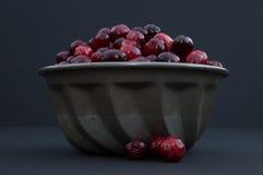Cranberries w metalu pucharze z jagodami Z pucharu Obrazy Royalty Free