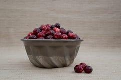 Cranberries w metalu pucharze z Luźnymi jagodami przy oko poziomem Obraz Royalty Free