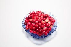 Cranberries w przejrzystym talerzu na białym tle, Zdjęcia Royalty Free
