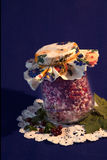 Cranberries w sproszkowanym cukierze Obraz Stock