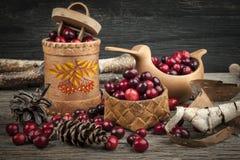 Cranberries wciąż życie Fotografia Royalty Free