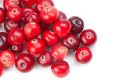 Cranberries on white background macro view. Red ripe detailed forest berries. Royalty Free Stock Image